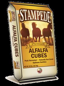 Alfalfa Hay Cube