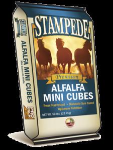 Alfalfa Hay Cube (Mini)