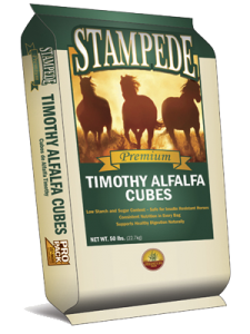Alfalfa Hay Cube (Timothy)