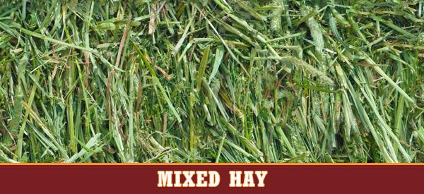 Mixed Hay